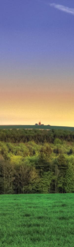 bv-2.jpg